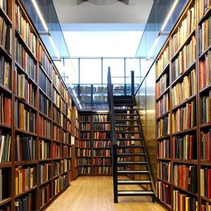 Библиотеки Забитуя